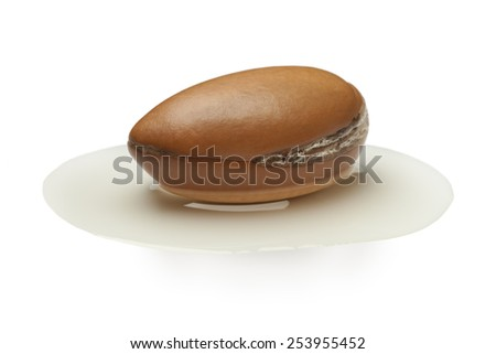 Single Argan nut laying in a puddle of oil - stock photo