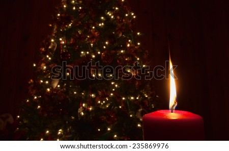 Single candle that is lit in front of a Christmas tree - stock photo