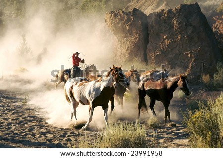 Single cowboy guiding a group of horses through the desert - stock photo