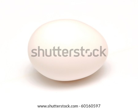 single egg isolated on white - stock photo