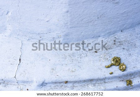 single feces of bird on the wall - stock photo