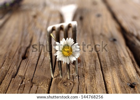 single fork - stock photo