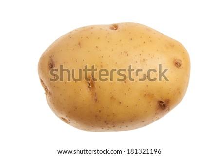 Single fresh potato. Isolated on white background. Close-up studio photography. - stock photo