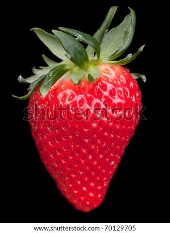 strawberry point black singles Zip code 52076 - strawberry point ia iowa, usa - clayton county.