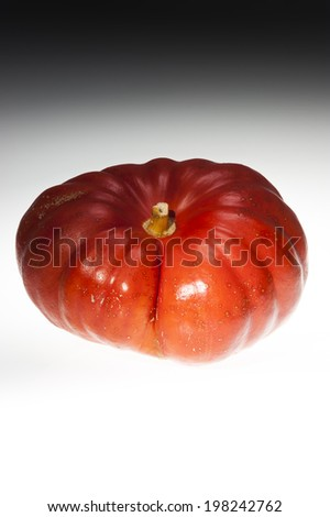 Single grooved orange ripe pumpkin shooting in studio. Dark and scary atmosphere. Isolated on black and white background. - stock photo