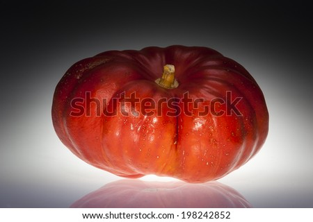 Single grooved orange ripe pumpkin shooting in studio. Dark and scary atmosphere. Isolated on black and white background with reflections. - stock photo