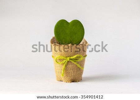 Single Heart Like Cactus Flowerpot with Copy Space in Heart to input Text Decorated with Brown Sack and Green Bow on White Background - stock photo