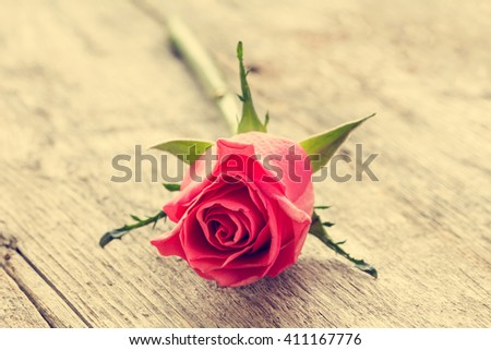 Single pink rose lying on the wooden background. Vintage filter. - stock photo