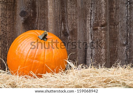 Single pumpkin on hay against rustic wooden background with copy space
