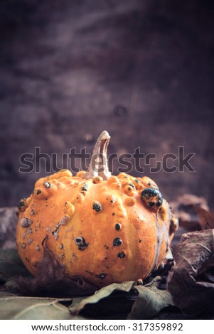 Single scary orange pumpkin on wooden background,halloween concept and blank space - stock photo