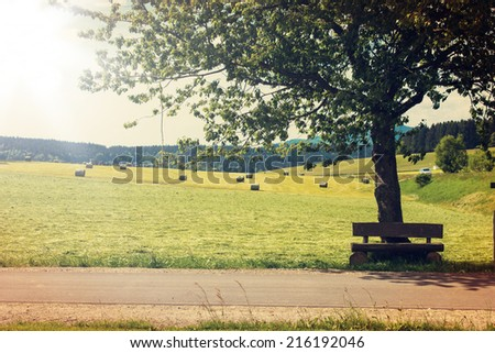 Single Tree and Pastures in Germany with a retro vintage instagram filter effect - stock photo