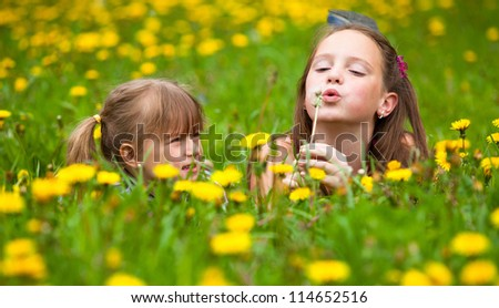 Sisters blowing dandelion seeds away in the meadow - stock photo