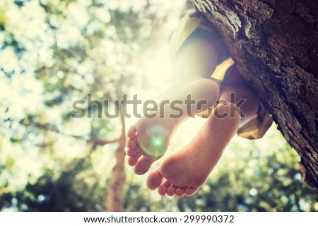 Sitting on the tree, freedom, feet - stock photo