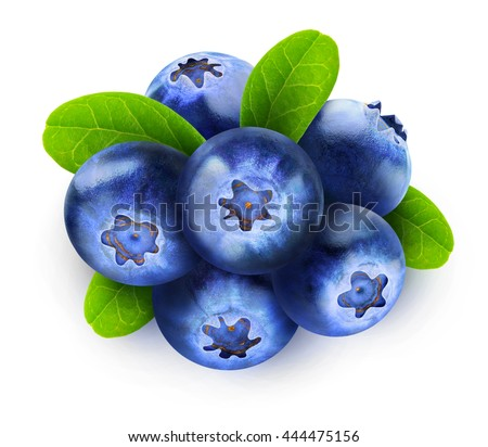 Six blueberry fruits isolated on white background with clipping path - stock photo