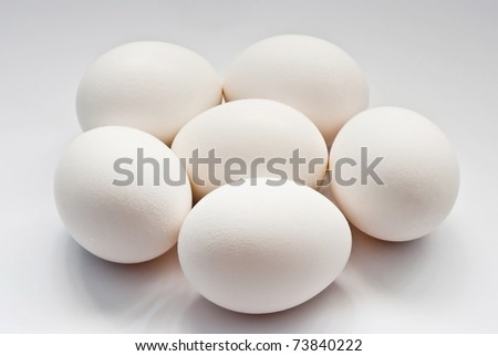 six eggs on a grey background