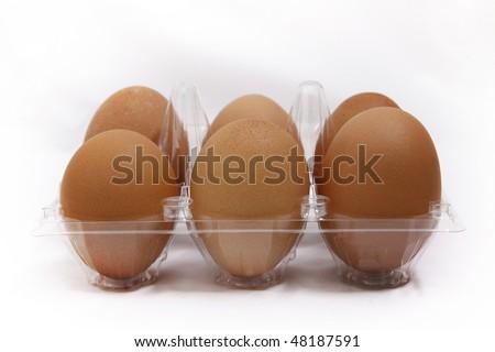 six eggs on plastic holder - stock photo