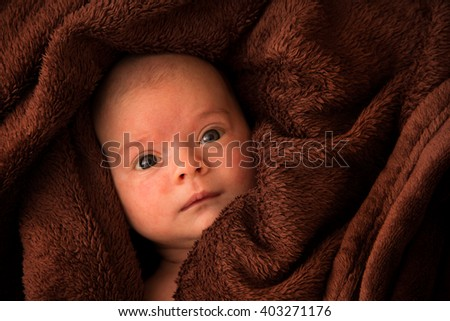 Six weeks old baby girl lying and hiding in brown blanket - stock photo