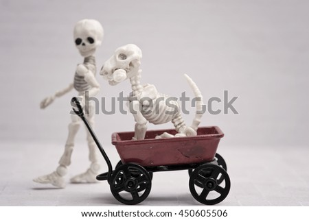 Skeleton child pulling dog in his wagon - stock photo