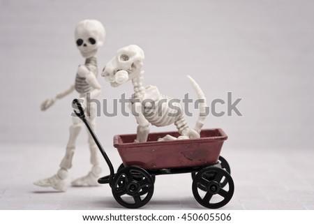 Skeleton child pulling dog in his wagon - stock photo