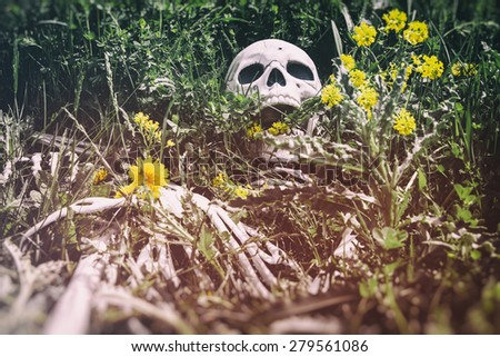 Skeleton in the Grass 9. Human skeletal bone remains among the grass, weeds and dandelions of a field meadow. Edited with a vintage film effect. - stock photo
