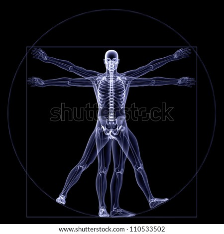 Skeleton X-Ray - Vitruvian: X-Ray of a male skeleton in a Leonardo da Vinci Vitruvian style pose. Isolated on a black background - stock photo