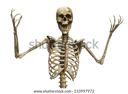 Skelton that is screaming - stock photo
