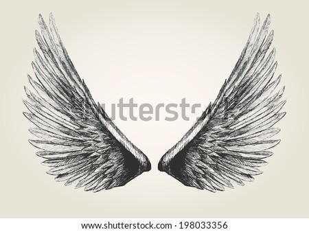 Sketch illustration of wings - stock photo