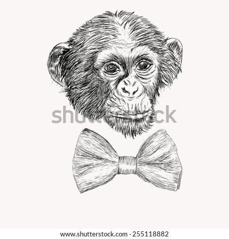 Sketch monkey face with bow tie. Hand drawn doodle illustration. - stock photo