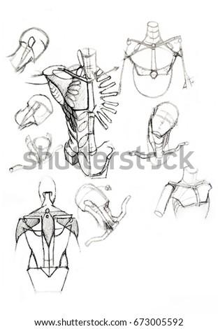 Sketch Human Anatomy Drawing Soft Pencil Stock Illustration
