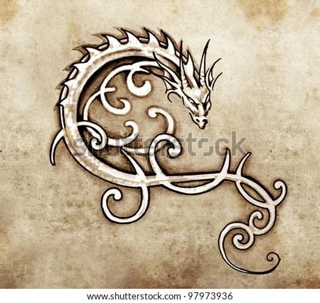 Sketch of tattoo art, decorative dragon - stock photo
