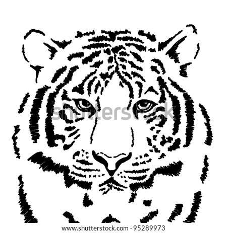 Sketch of white tiger - stock photo