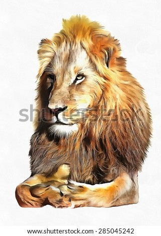 Pencil sketch lion quot stock photos royalty free images amp vectors