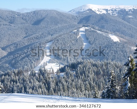 Ski pistes on the mountain slope surrounded by spruce forest at ski resort in sunny day  - stock photo
