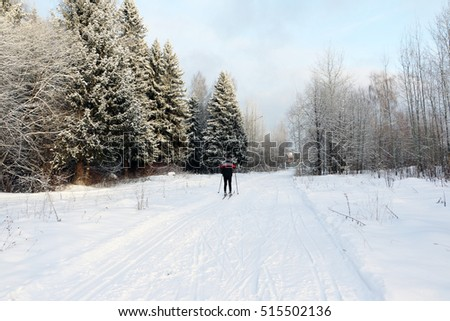 Ski track for skiers in the forest in a winter day