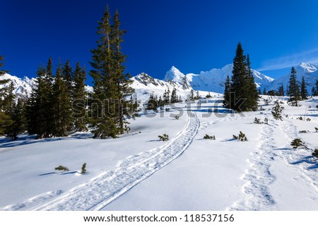 Ski track trail Gasienicowa valley winter snow Koscielec, High Tatra Mountains, Poland