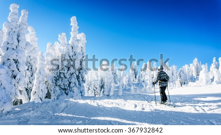 Skier enjoying the winter and snow covered tree landscapes on the ski hills surrounding the village of Sun Peaks in the Shuswap Highlands of central British Columbia Canada - stock photo