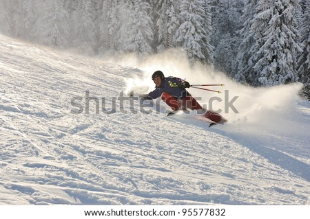 Skier in nature - stock photo