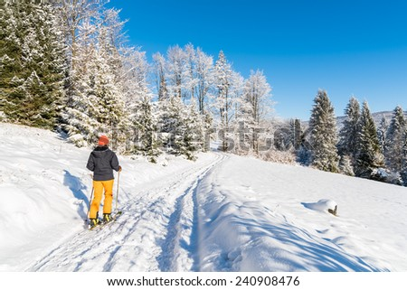 Skier on track in winter landscape of Beskid Sadecki Mountains, Poland - stock photo