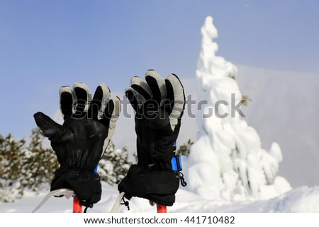 skier's gloves on sticks in mountains
