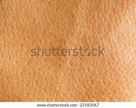 Skin background. - stock photo