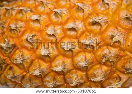 Skin pineapple - stock photo