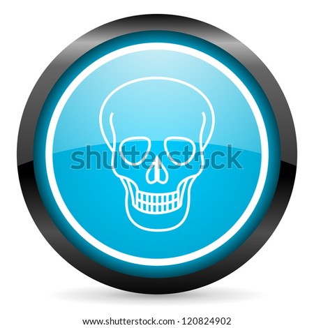 skull blue glossy circle icon on white background
