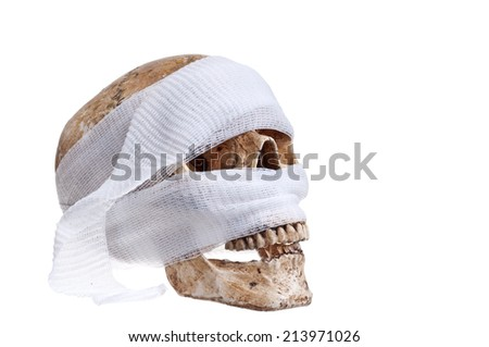 Skull  Halloween - stock photo