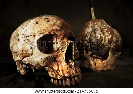Skull  Haloween - stock photo