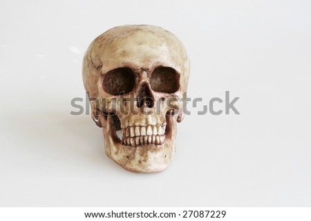 Skull head on isolated background