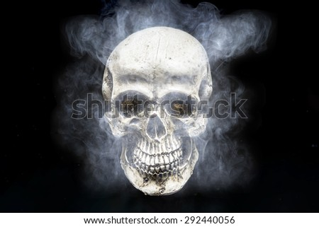 Skull in the smoke on a black background - stock photo