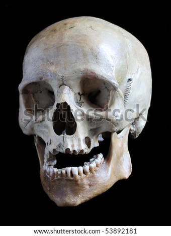 Skull of the person closeup on a black background. - stock photo