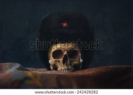 Skull with russian Ushanka and Flag - stock photo