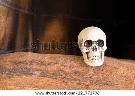skulls in a fireplace  - stock photo