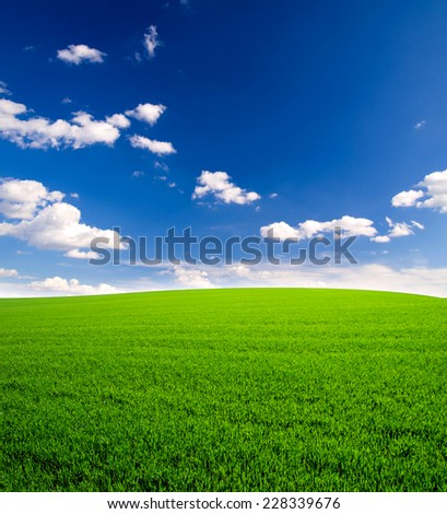 sky and grass field background - stock photo